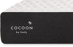 Cocoon Classic